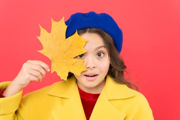 Наслаждайтесь сезоном. привет, сентябрь. маленькая девочка приветствует осенний сезон. малыш девушка милое лицо держать кленовый лист. ребенок с осенними желтыми листьями. наступила осень. маленькая девочка носит осенний наряд на красном фоне.