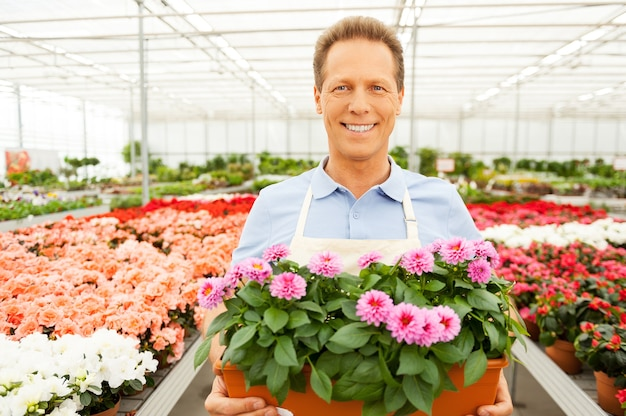 식물과 함께 그의 작업을 즐긴다. 화분을 들고 온실에 서 있는 동안 웃는 앞치마에 잘 생긴 성숙한 남자의 와이드 앵글 초상화