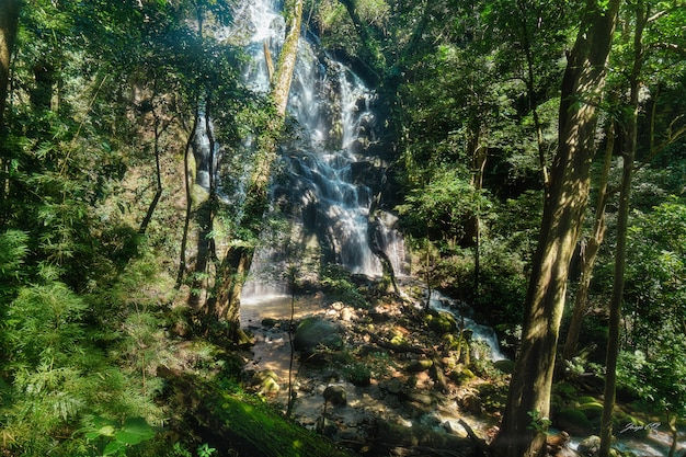 An enormous waterfall surrounded by beautiful nature at the volcan de la vieja national park in costa rica
