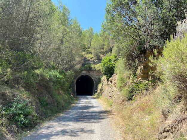 Войдите в туннель на природе