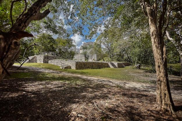 メキシコのチチェンイツァの考古学複合施設に属する植生と樹木でろ過された建物全体
