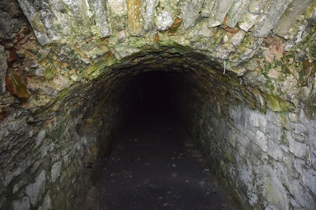 The entrance to the eerie dungeon. a corridor leading into the dark. covered with rough stone. only the beginning of the path is lit