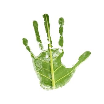 환경 관리 개념. 녹색 잎 질감 표면으로 손 자국. 지구의 날과 생태. 지속 가능한 자원, 자원 봉사자의 손. 흰색 배경에 고립
