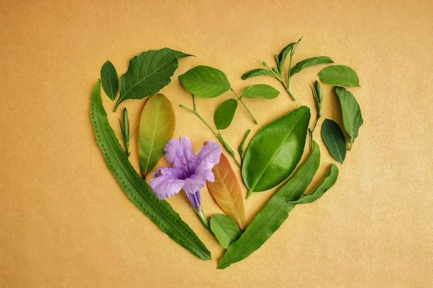 환경 및 건강 관리 개념. 심장의 모양에 녹색 잎입니다. 녹색 에너지, 재생 가능하고 지속 가능한 자원