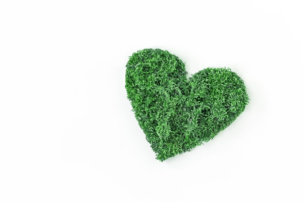 환경 개념 보호 및 자연 보호. 텍스트 흰색 배경 복사 공간에 잎의 심장.