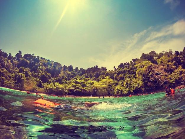 환경 생태 자연 야외 유기