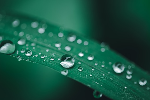 Environmental love water drop concept background