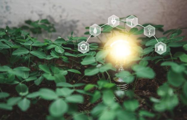 환경 친화적이고 지속 가능한 에너지 옵션 재생 가능한 지속 가능한 에너지원