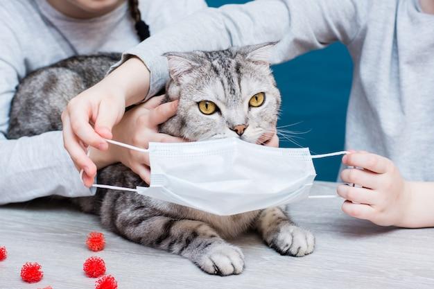 전염병 covid-19. 아이들은 코로나 바이러스로부터 보호하기 위해 고양이에게 의료용 마스크를 착용하려고합니다. 수의학 보호.