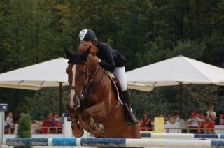 乗馬、スポーツ
