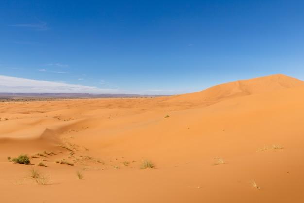 サハラ砂漠のerg chebbiの砂丘