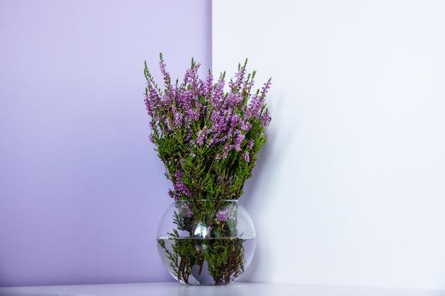 エリカカルネア冬のヒース、冬開花ヘザー、春の高山ヒースピンクの花。エリカcarnea観賞植物を開花、クローズアップ