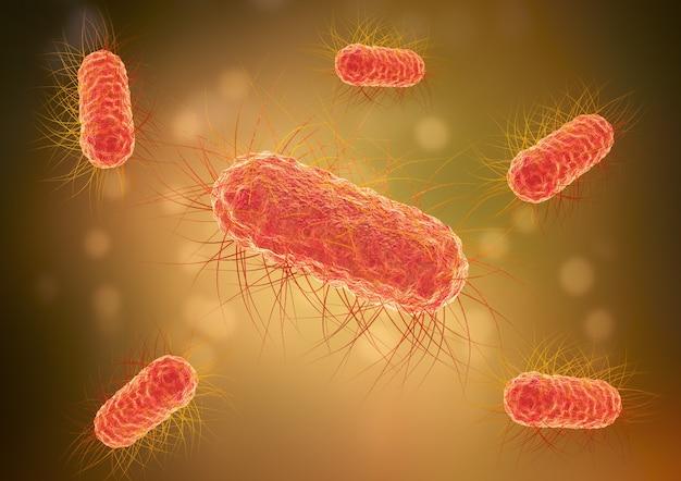 대장균 박테리아, e.coli, 장에서 발견되는 미생물. 일부 해로운 유형은 설사와 염증을 유발합니다. 3d 일러스트레이션