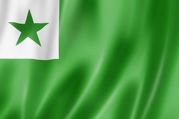 Esperanto language flag. waving banner collection. 3d illustration