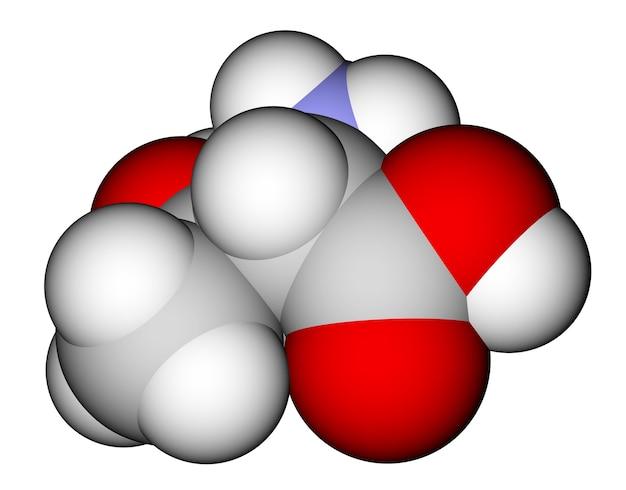 필수 아미노산 트레오닌 3d 분자 모델