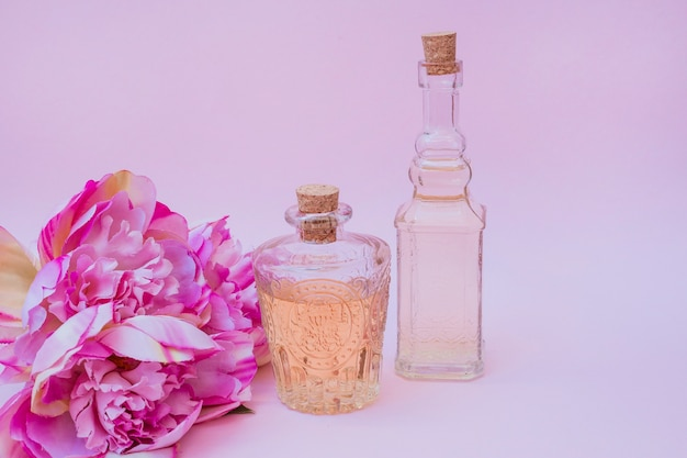 Essential oil bottles and flowers on pink background