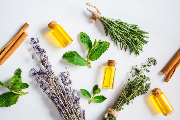 Essential oil in glass bottles. thyme, mint, rosemary and lavender essential oils, top view.