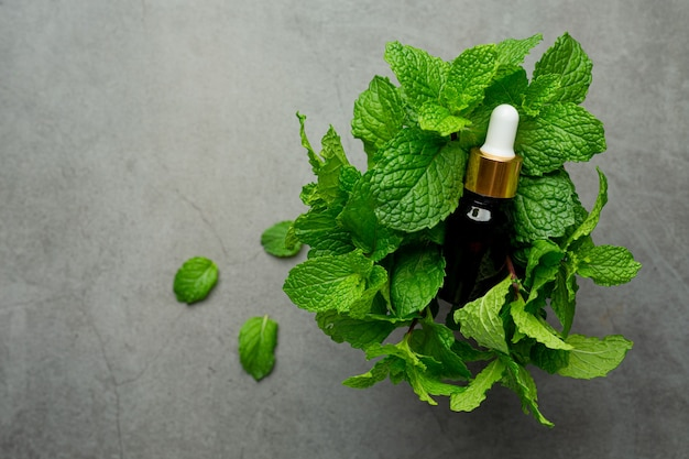 Essential oil of peppermint in bottle with fresh green peppermint