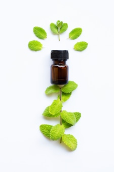 Essential oil with fresh apple mint leaves on white