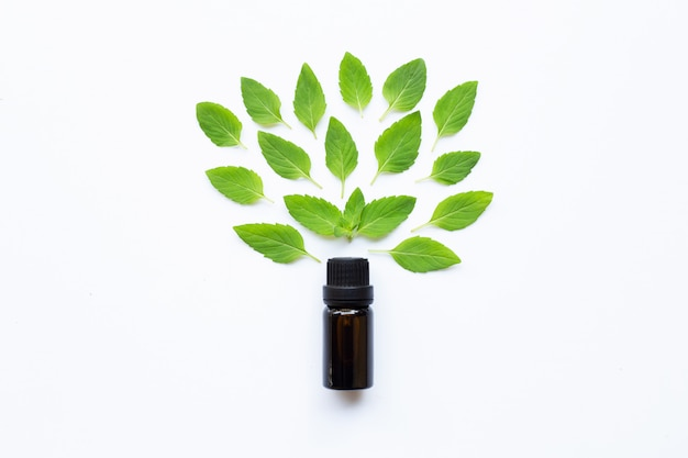 Essential oil with fresh mint leaves on white