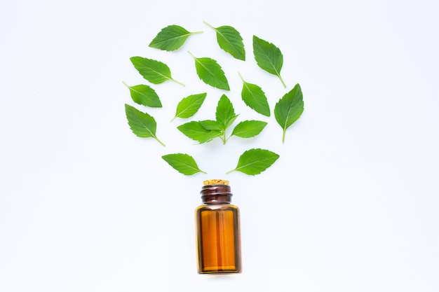 Essential oil with fresh mint leaves on white.