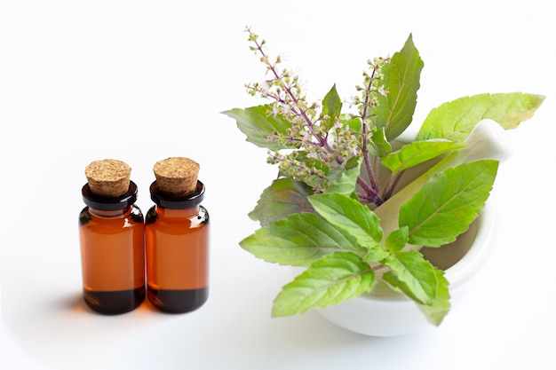 Essential oil with holy basil leaves in porcelain mortar on white