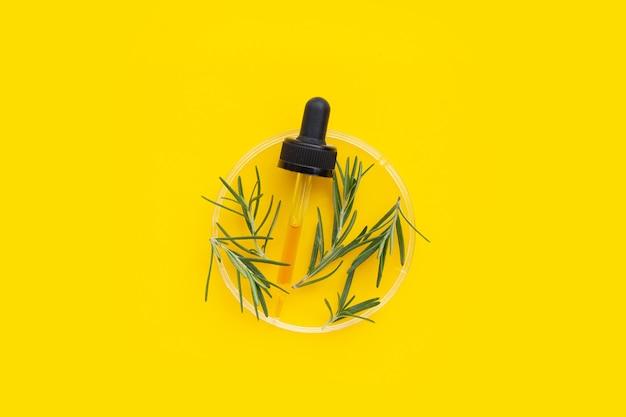 黄色の背景にペトリ皿にローズマリーの葉とエッセンシャルオイル。