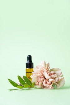 Essential oils , various bottles with carnation flower and green leaves on a green background. aromatherapy and perfumes concept