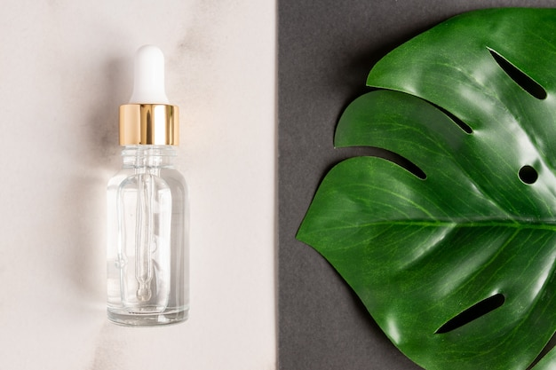 Essential oils with drops pipette on marble background. grean monstera leaf decoration