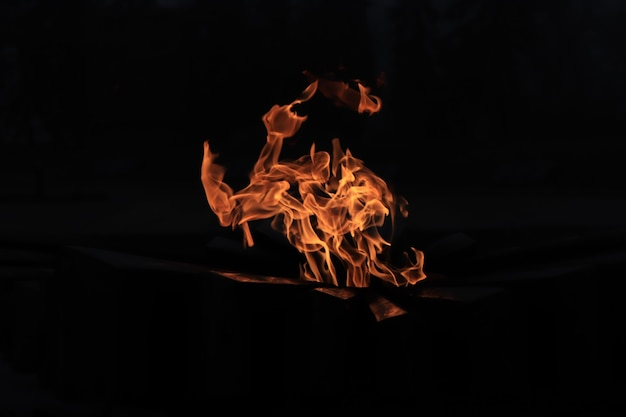 Вечный огонь пламя в темноте свет в темноте