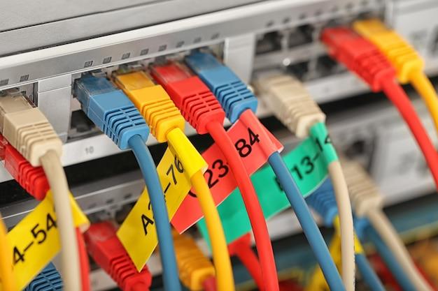 네트워크 스위치에 연결된 이더넷 케이블, 클로즈업