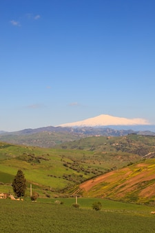 Etna volcano and sicily field