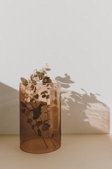 壁に日光の影がある黄褐色のガラスの花瓶のユーカリの枝。最小限の室内装飾デザイン