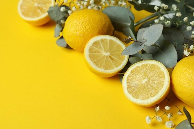 黄色の背景にユーカリの枝、レモン、カスミソウ