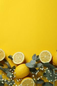 Eucalyptus branches, lemons and gypsophila on yellow background