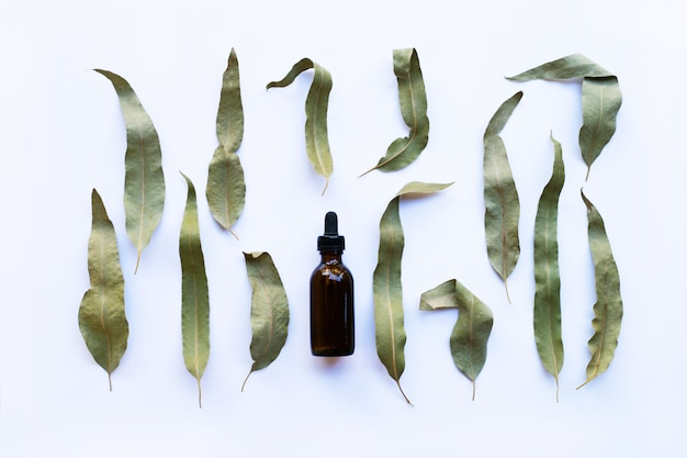 Eucalyptus essential oil bottle with dry leaves on white