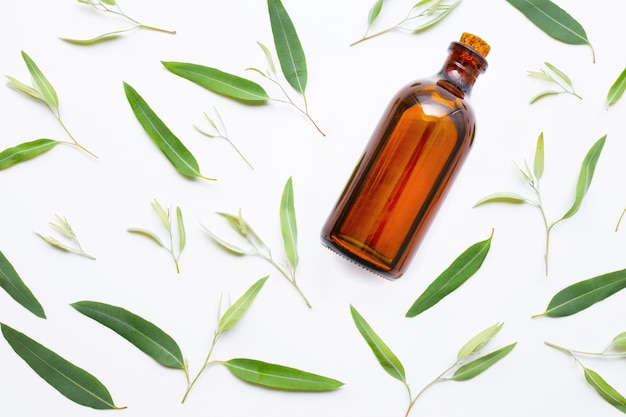 Eucalyptus essential oil bottle with  leaves on white.
