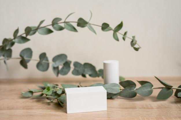 Эфирное масло эвкалипта листья эвкалипта на белом фоне продукты органической косметики