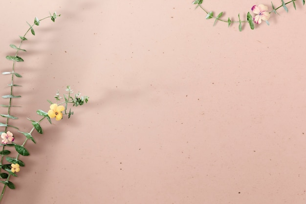 Ветка цветка эвкалипта с тенью на бежевом бетоне