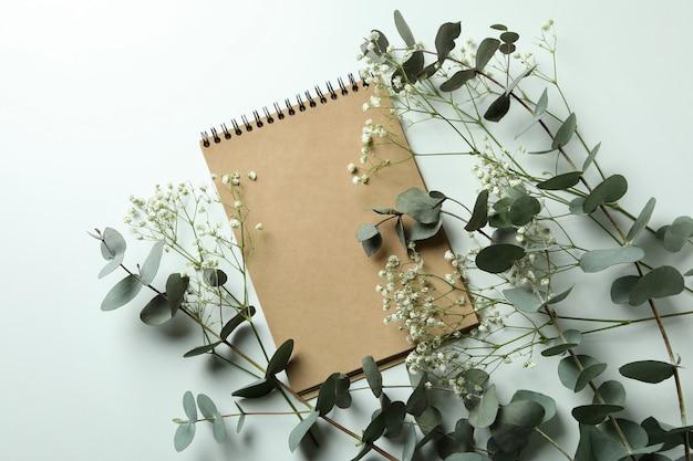Eucalyptus, gypsophila and notebook on white background