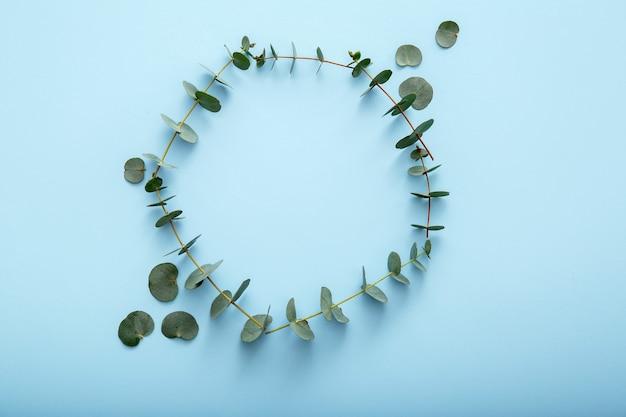 유칼립투스 잎 원입니다. 파란색 배경에 유칼립투스 꽃 프레임입니다. 유칼립투스 가지로 만든 꽃 원형 프레임 나뭇잎. 모의 복사 공간이 있는 상위 뷰 유칼립투스 프레임입니다.