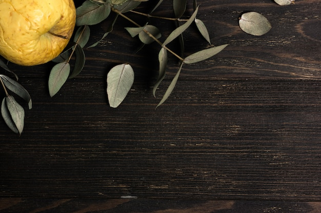 Eucalyptus leaves branches with old yellow apple on dark wooden background