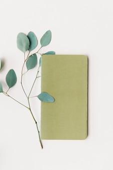 빈 노트북 덮개 옆에 있는 유칼립투스 잎
