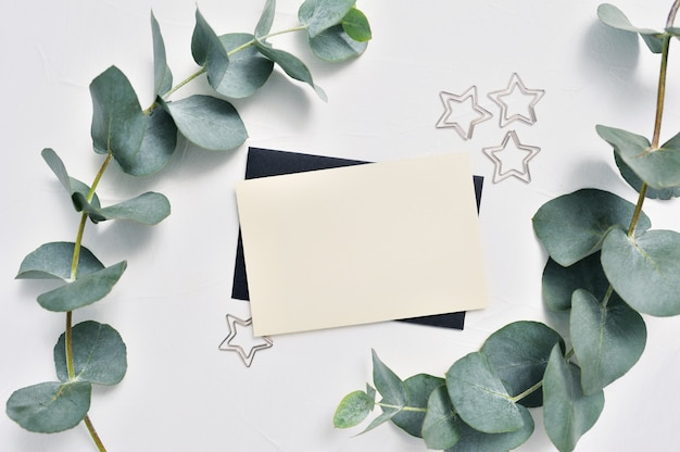 Eucalyptus leaves and card with stars paper clips