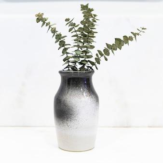 ユーカリの葉は黒と白の花瓶に