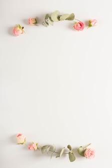 유칼립투스는 흰색 배경에 핑크 장미 꽃 봉오리와 나뭇 가지를 나뭇잎