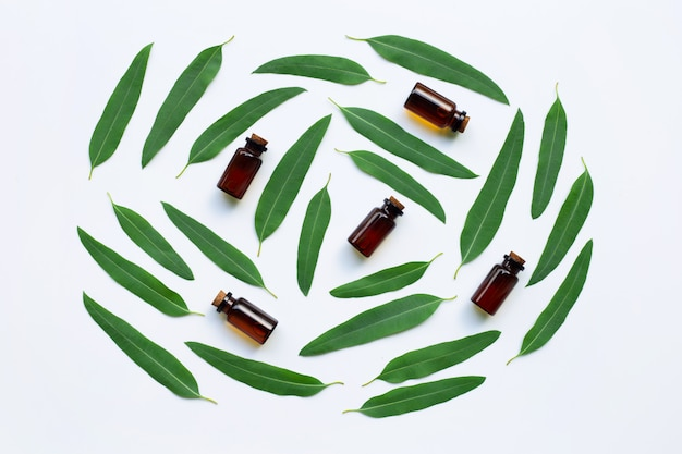 Eucalyptus oil bottles with leaves on white.