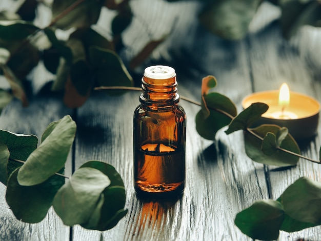 Eucalyptus oil and eucalyptus leaves.