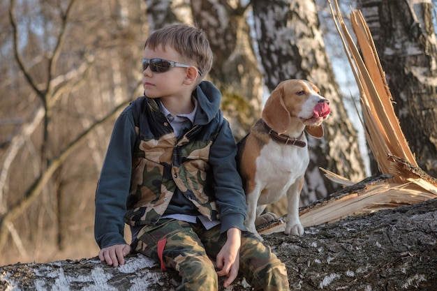 European boy and beagle dog sit on a tree in the forest while walking in the evening