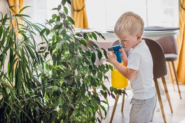 ヨーロッパの少年ブロンドスプレー屋内植物、環境にやさしい、自給自足の植木鉢、屋内庭園